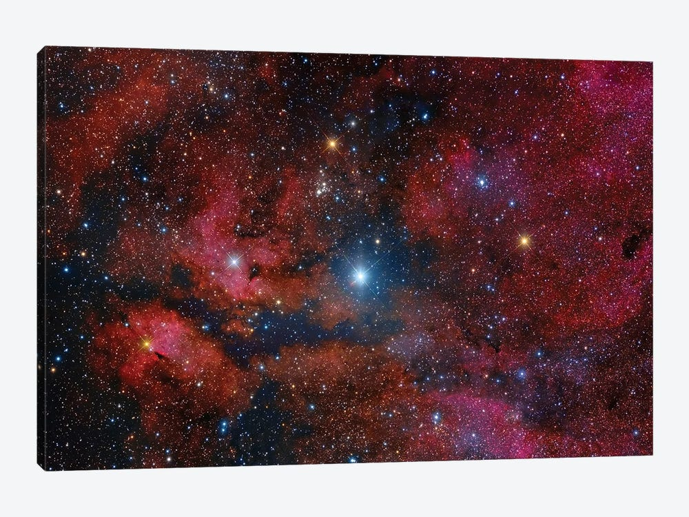 Gamma Cygni Star And Its Surroundings by Roberto Colombari 1-piece Art Print
