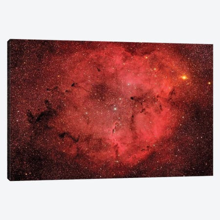 The Elephant Trunk Nebula (IC 1396) I Canvas Print #TRK1332} by Roberto Colombari Canvas Artwork