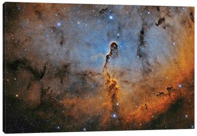 The Elephant Trunk Nebula (IC 1396) II Canvas Art Print