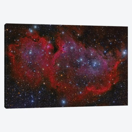The Heart Nebula In The Cassiopeia Constellation Canvas Print #TRK1335} by Roberto Colombari Canvas Art Print