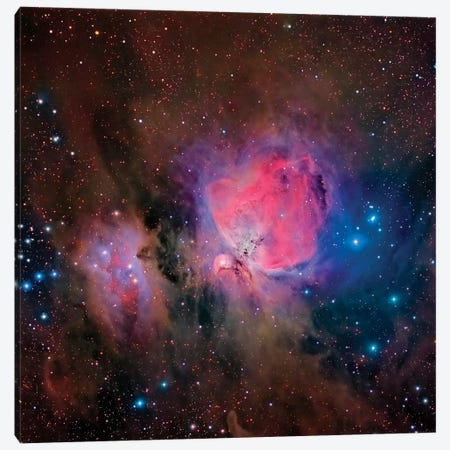 The Orion Nebula (M42) Canvas Print #TRK1336} by Roberto Colombari Canvas Art Print