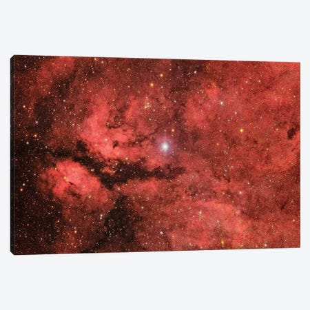 The Sadr Region In The Constellation Cygnus Canvas Print #TRK1340} by Roberto Colombari Canvas Art Print