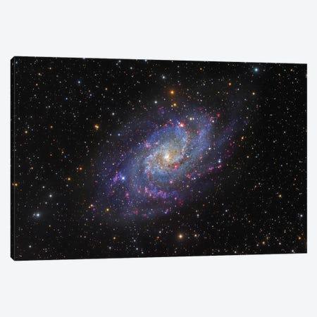 The Triangulum Galaxy (NGC 598) I Canvas Print #TRK1342} by Roberto Colombari Canvas Print
