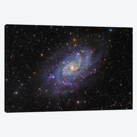 The Triangulum Galaxy (NGC 598) I Canvas Print #TRK1342} by Roberto Colombari Canvas Print