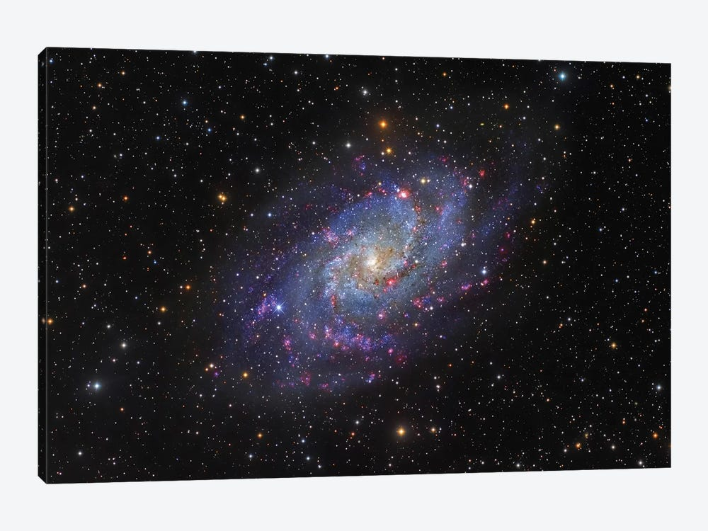 The Triangulum Galaxy (NGC 598) I by Roberto Colombari 1-piece Canvas Print