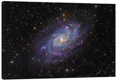 The Triangulum Galaxy (NGC 598) I Canvas Art Print