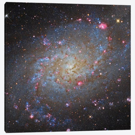 The Triangulum Galaxy (NGC 598) II Canvas Print #TRK1343} by Roberto Colombari Canvas Print