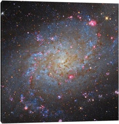 The Triangulum Galaxy (NGC 598) II Canvas Art Print