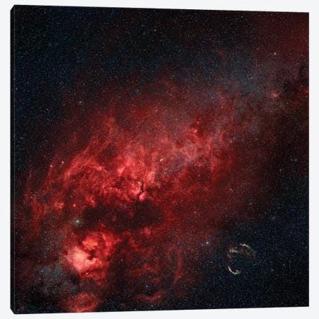 Constellation Cygnus With Multiple Nebulae Visible Canvas Print #TRK1345} by Rolf Geissinger Canvas Wall Art