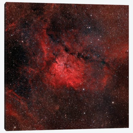 Emission Nebula (NGC 6820) Canvas Print #TRK1346} by Rolf Geissinger Canvas Artwork