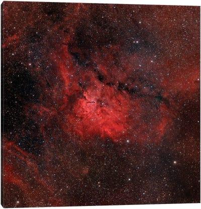 Emission Nebula (NGC 6820) Canvas Art Print