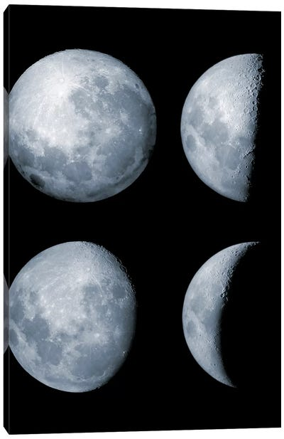 Four Phases Of The Moon Canvas Art Print