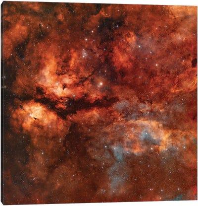 The Butterfly Nebula (IC 1318) Around Star Gamma-Cygni Canvas Art Print