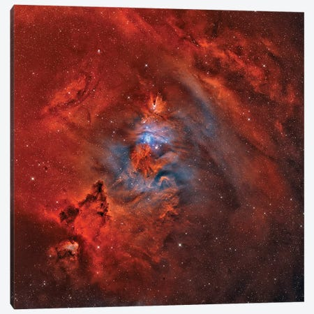 The Christmas Tree Nebula, Cone Nebula, And Fox Fur Nebula (NGC 2264) Canvas Print #TRK1354} by Rolf Geissinger Art Print