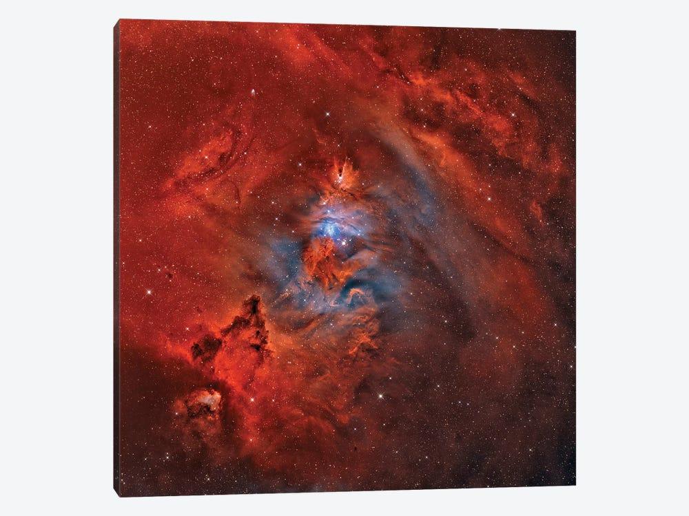 The Christmas Tree Nebula, Cone Nebula, And Fox Fur Nebula (NGC 2264) by Rolf Geissinger 1-piece Canvas Artwork