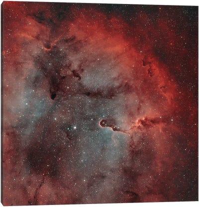The Elephant Trunk Nebula (IC 1396) I Canvas Art Print