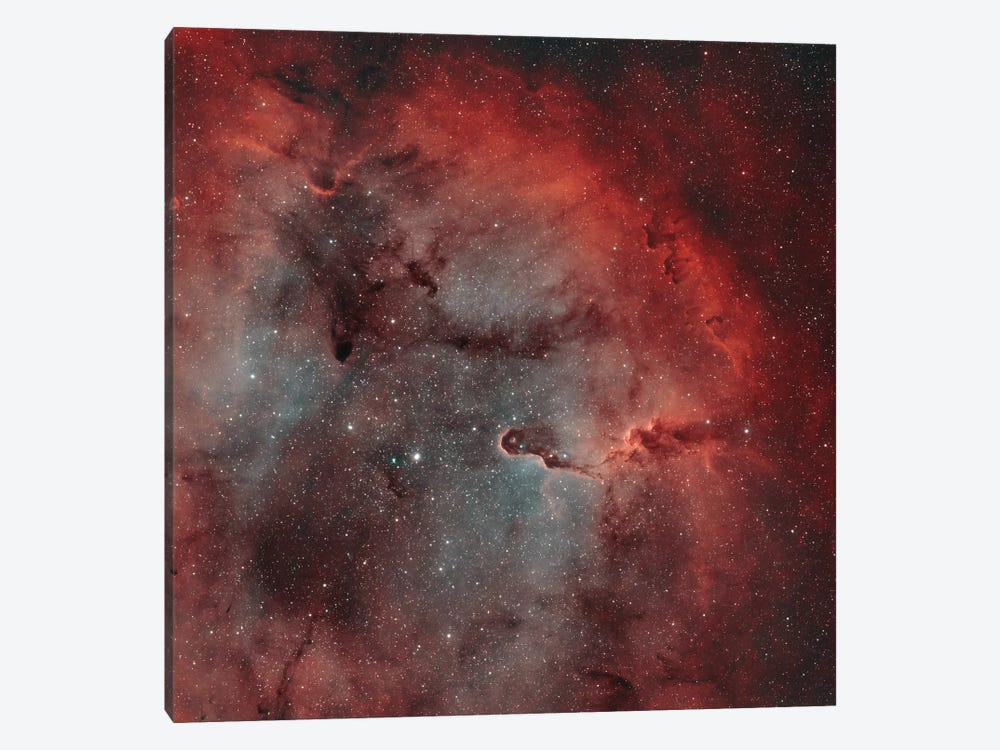 The Elephant Trunk Nebula (IC 1396) I by Rolf Geissinger 1-piece Canvas Print