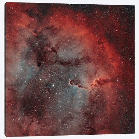 The Elephant Trunk Nebula (IC 1396) I Canvas Print #TRK1357} by Rolf Geissinger Canvas Art Print
