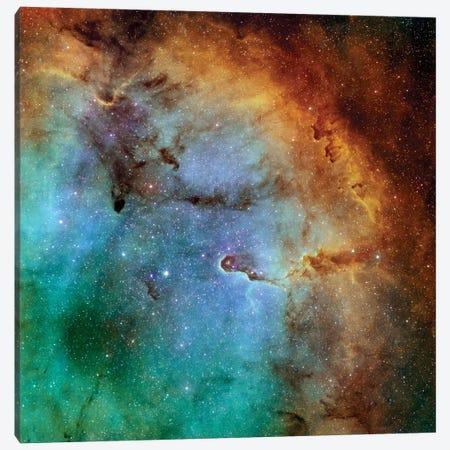 The Elephant Trunk Nebula (IC 1396) II Canvas Print #TRK1358} by Rolf Geissinger Canvas Wall Art