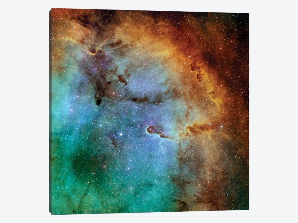 The Elephant Trunk Nebula (IC 1396) II by Rolf Geissinger 1-piece Canvas Art