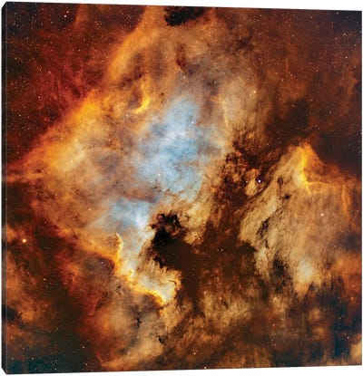 The North America Nebula And Pelican Nebula In Cygnus Canvas Art Print
