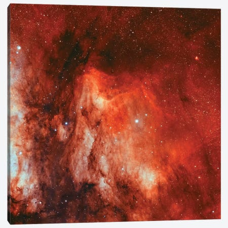 The Pelican Nebula (IC 5070 and IC 5067) Canvas Print #TRK1365} by Rolf Geissinger Canvas Wall Art