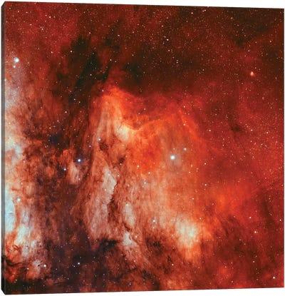 The Pelican Nebula (IC 5070 and IC 5067) Canvas Art Print