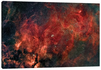 Widefield View Of The Crescent Nebula (NGC 6888) Canvas Art Print