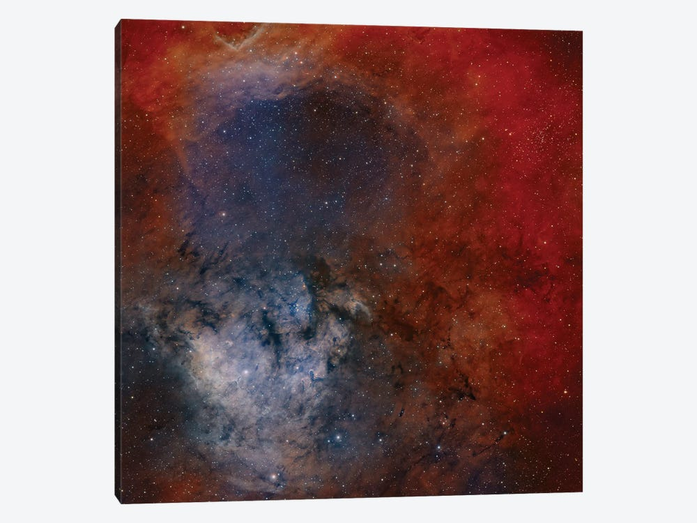 Young Star-Forming Complex NGC 7822 by Rolf Geissinger 1-piece Canvas Art