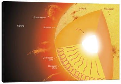 A Cutaway View Of The Sun Canvas Art Print