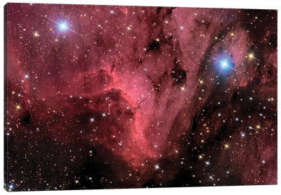 The Pelican Nebula (IC 5070 and IC 5067) Canvas Art Print