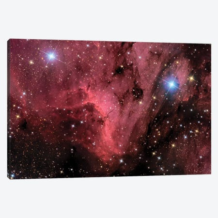 The Pelican Nebula (IC 5070 and IC 5067) Canvas Print #TRK1384} by Roth Ritter Canvas Art