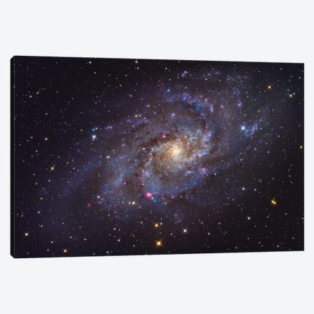 The Triangulum Galaxy (NGC 598) Canvas Print #TRK1385} by Roth Ritter Canvas Wall Art