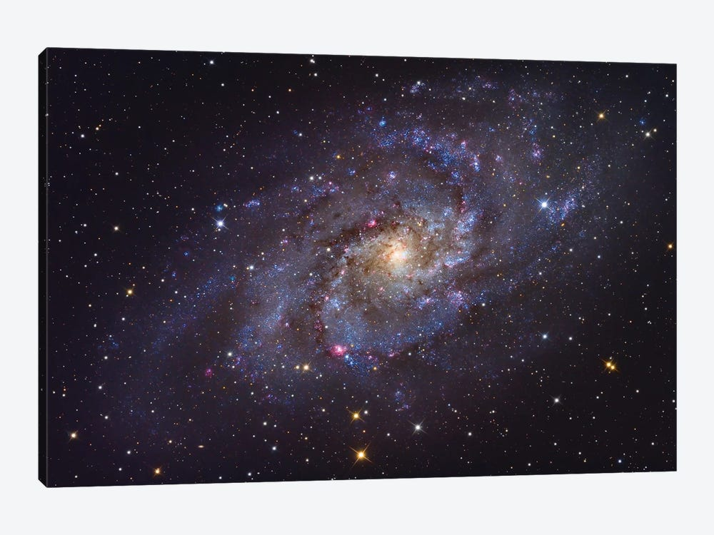 The Triangulum Galaxy (NGC 598) by Roth Ritter 1-piece Canvas Art
