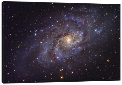 The Triangulum Galaxy (NGC 598) Canvas Art Print