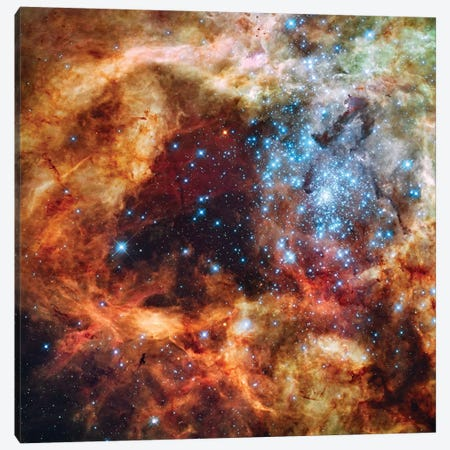 A Stellar Nursery Known As R136 In The 30 Doradus Nebula Canvas Print #TRK1407} by Stocktrek Images Canvas Print