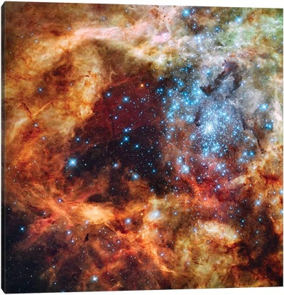 A Stellar Nursery Known As R136 In The 30 Doradus Nebula Canvas Art Print