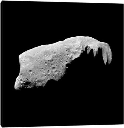 Asteroid 243 Ida Canvas Art Print
