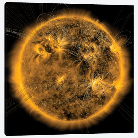 Magnetic Field Lines On The Sun I Canvas Print #TRK1514} by Stocktrek Images Canvas Print