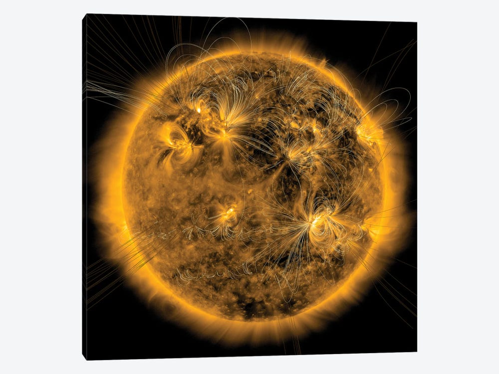 Magnetic Field Lines On The Sun I by Stocktrek Images 1-piece Canvas Wall Art