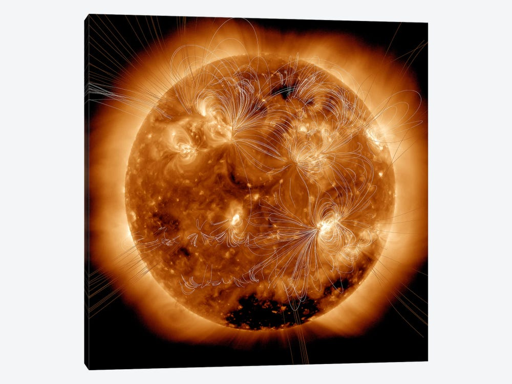Magnetic Field Lines On The Sun II by Stocktrek Images 1-piece Canvas Art Print