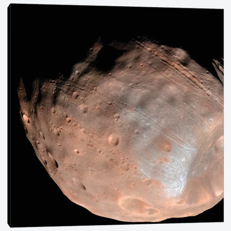 Mars Moon Phobos I Canvas Print #TRK1521} by Stocktrek Images Canvas Art Print