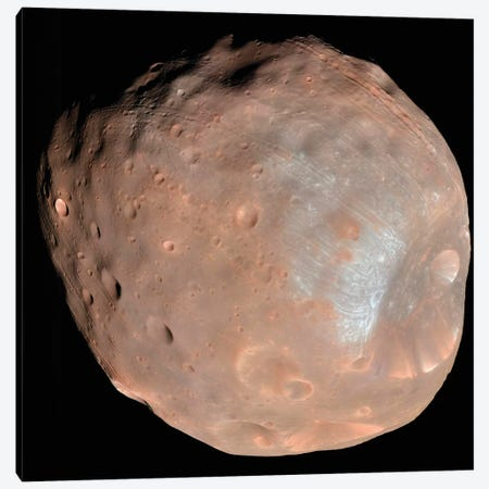 Mars Moon Phobos II Canvas Print #TRK1522} by Stocktrek Images Canvas Art Print