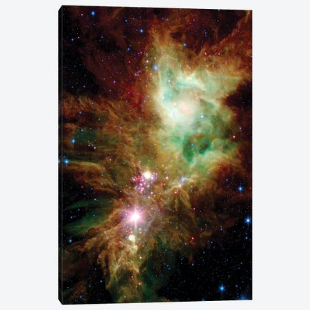 Newborn Stars In The Christmas Tree Cluster (NGC 2264) Canvas Print #TRK1531} by Stocktrek Images Canvas Art