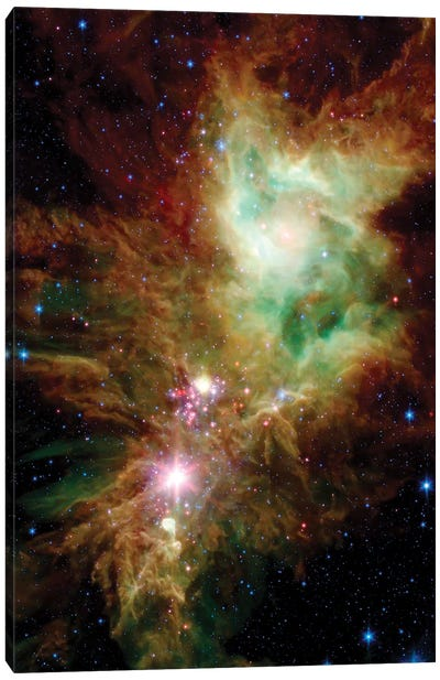 Newborn Stars In The Christmas Tree Cluster (NGC 2264) Canvas Art Print
