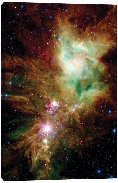 Newborn Stars In The Christmas Tree Cluster (NGC 2264) Canvas Art Print