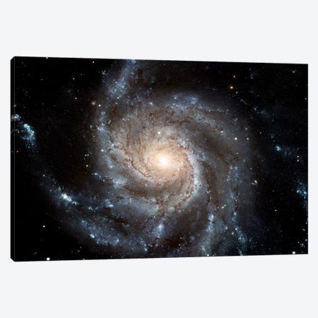 Spiral Galaxy (M101) Canvas Print #TRK1692} by Stocktrek Images Canvas Art Print