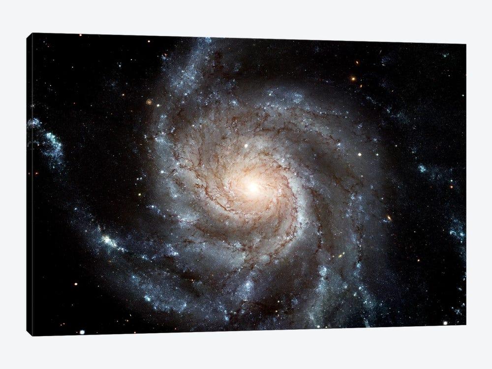 Spiral Galaxy (M101) by Stocktrek Images 1-piece Canvas Art