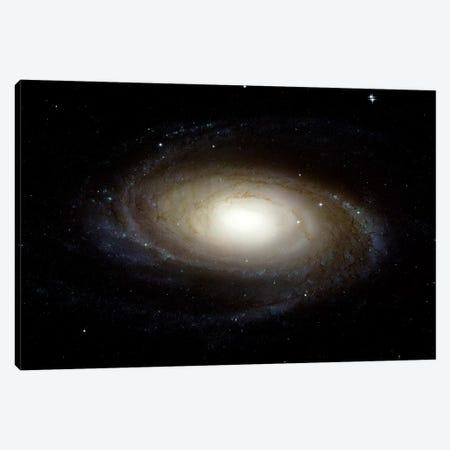 Spiral Galaxy (M81) Canvas Print #TRK1693} by Stocktrek Images Canvas Print