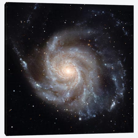 The Pinwheel Galaxy (M101) Canvas Print #TRK1735} by Stocktrek Images Art Print